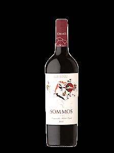 Vino de Aragón | Somontano | Tinto Barrica | La Cuba de Baco
