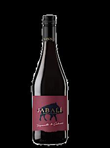 Vino de Aragón | Cariñena | Tinto Joven | La Cuba de Baco