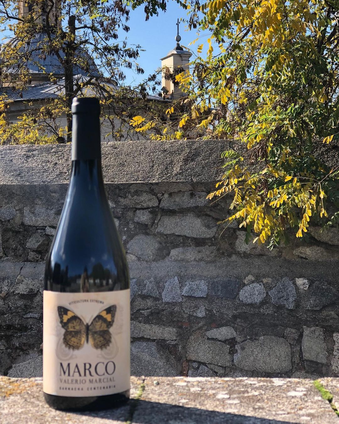 Comprar vino de Aragón | Calatayud | Tinto Crianza | La Cuba de Baco